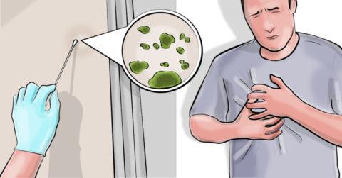 Jakie są symptomy choroby wywołanej pleśnią?